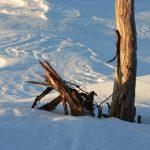 V údolích sice sněhu moc nebylo, ale v horách ho napadlo dost a dost.