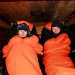 Do zimy se probudili dva tuleni.