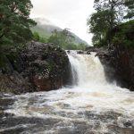 Bohužel po nedávných silných deštích měla přílš mnoho vody.
