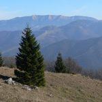 Nízké Tatry v mlhavém pozadí.