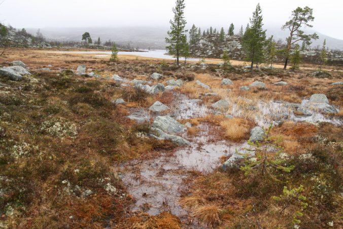Typická krajina, voda, kameny, tráva a voda…