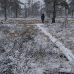 Postupně připadlo víc sněhu, který se proměnil v mokrou břečku.
