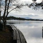 Nevtíravé zamyšlené kouzlo skandinávského podzimu.