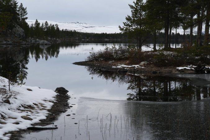 Členitá krajina se spoustou lesů a vody.
