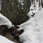 Kolem potoka na dně kaňonu.