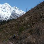 Údolí se postupně otvírá a ledu a sněhu v okolí začíná přibývat.