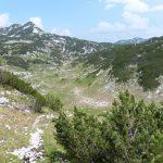 Jižní výběžky Totes Gebirge jsou plné vegetace.