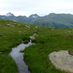 Sytá zeleň alpských luk.