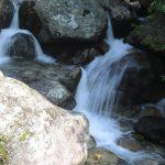 Velický potok.