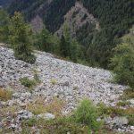 Prudké stoupání na Feldkögerl kamenitým polem.