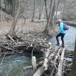 Péťa přechází potok po naplaveném dříví.